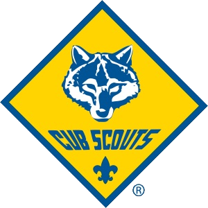 CubScout_4K 300 x 300 transparent
